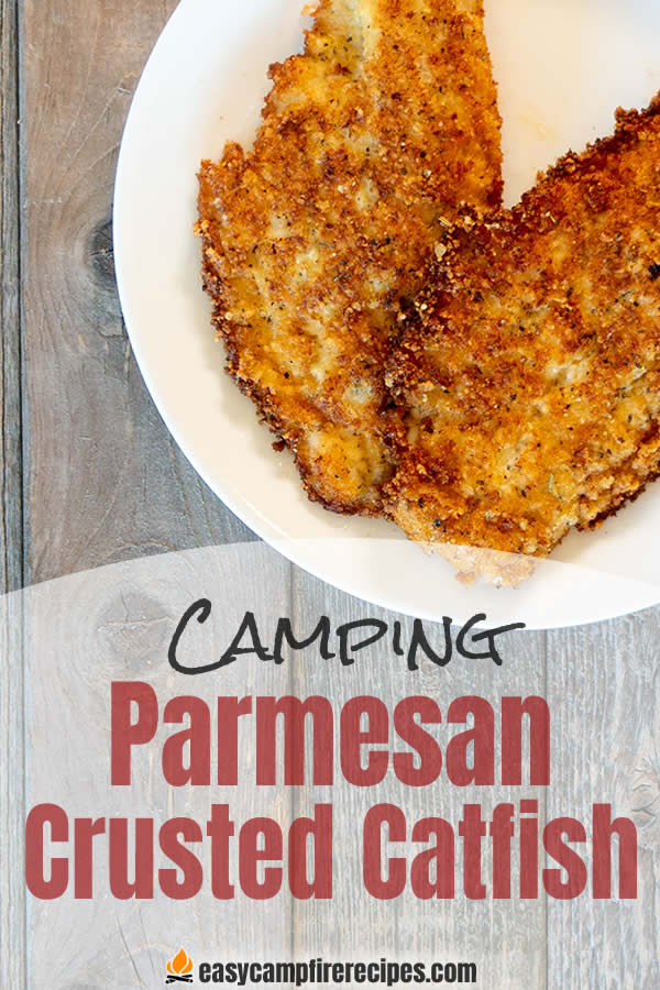 Sometimes you just aren't in the mood for cornmeal coated catfish. Change things up with some pan-fried parmesan-crusted catfish.