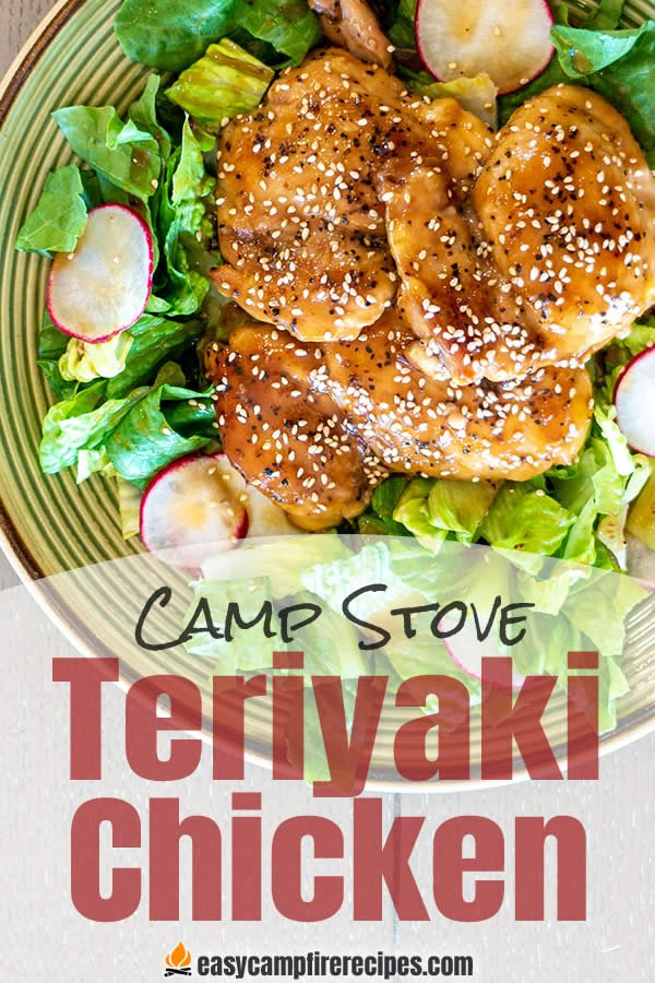 This camp stove teriyaki chicken recipe helps you change things up at the campsite and tastes excellent at the same time.